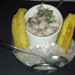 The Striped Bass Ceviche was Good and Came with these Plantain Chips.
